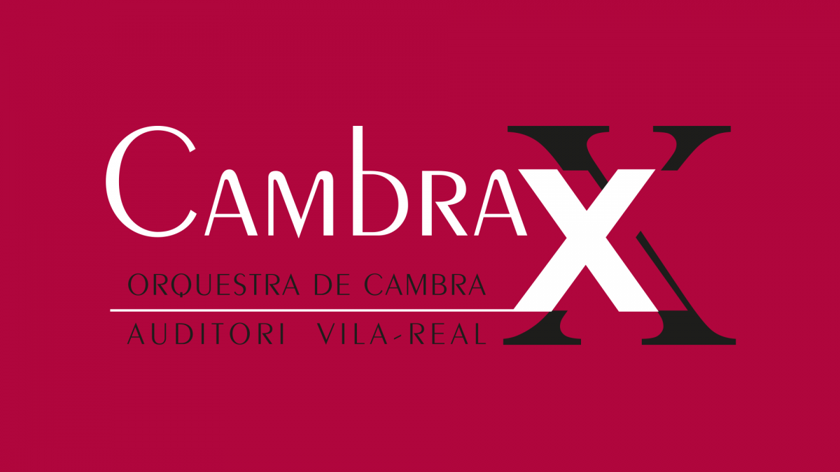 Cambra XX, Orquesta de cámara del Auditori de Vila-real